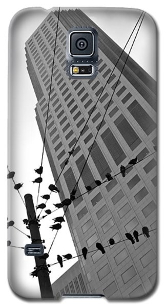Galaxy S5 Case featuring the photograph Birds Station by Jonathan Nguyen