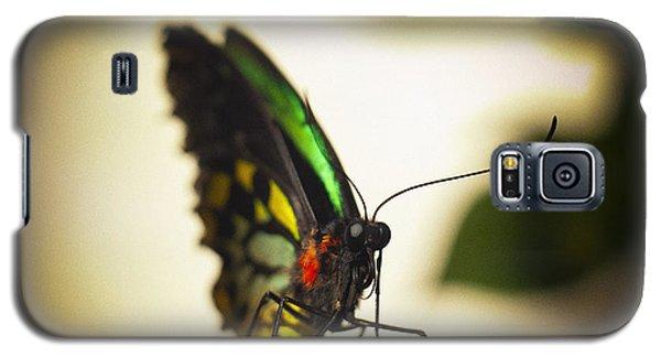 Birdwing Butterfly Galaxy S5 Case