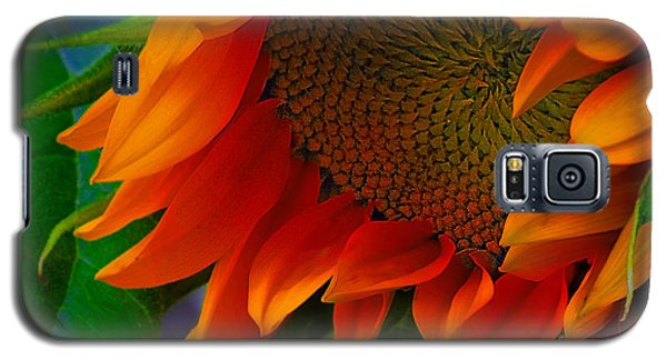 Birth Of A Sunflower Galaxy S5 Case