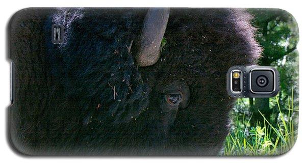 Bison Close Up Galaxy S5 Case