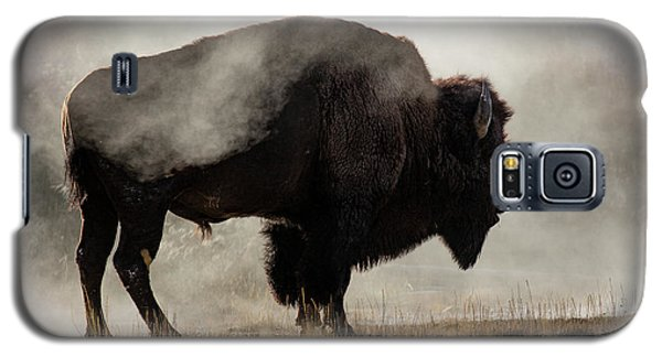 Bison Galaxy S5 Case - Bison In Mist, Upper Geyser Basin by Adam Jones