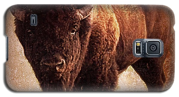 Bison Galaxy S5 Case by Mindy Bench
