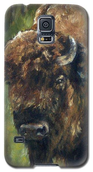 Bison Study - Zero Three Galaxy S5 Case by Lori Brackett