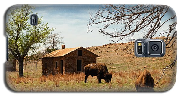 Bisons In The Springtime Galaxy S5 Case by Iris Greenwell