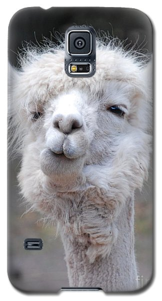 Galaxy S5 Case featuring the photograph Bite Your Tongue by Kathy Gibbons