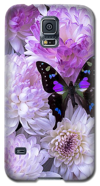 Black And Purple Butterfly On Mums Galaxy S5 Case