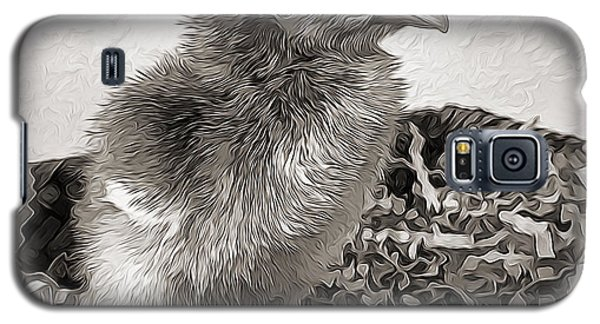 Black And White Baby Chicken Galaxy S5 Case