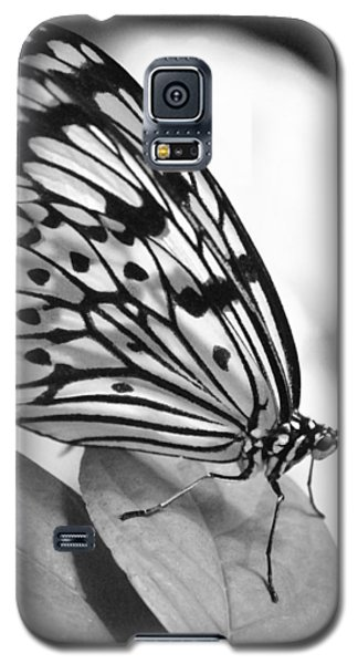 Black And White Beauty Galaxy S5 Case by Amee Cave