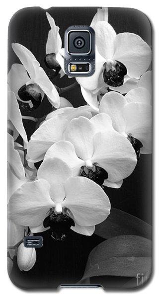 Black And White Beauty Galaxy S5 Case by Ramona Matei