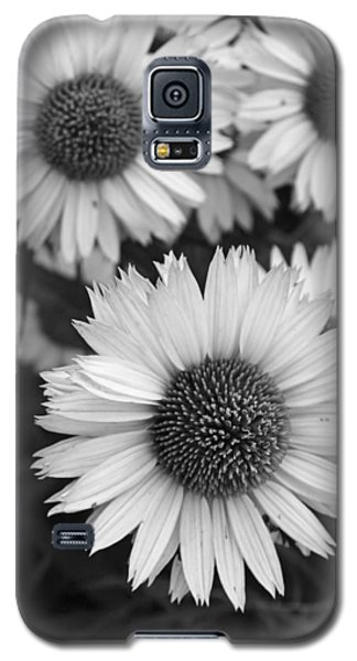 Galaxy S5 Case featuring the photograph Black And White Echinacea -  by Brooke T Ryan