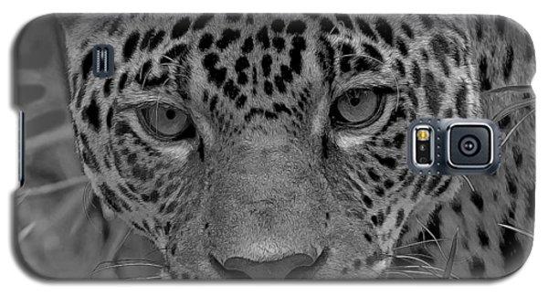 Black-and-white Jungle Cat Galaxy S5 Case