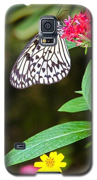 Black And White On Penta Galaxy S5 Case by Karen Stephenson