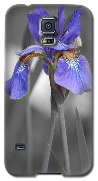 Black And White Purple Iris Galaxy S5 Case by Brenda Jacobs