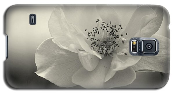 Black And White Rose Galaxy S5 Case
