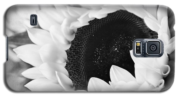 Black And White Sunflower Galaxy S5 Case by Eden Baed