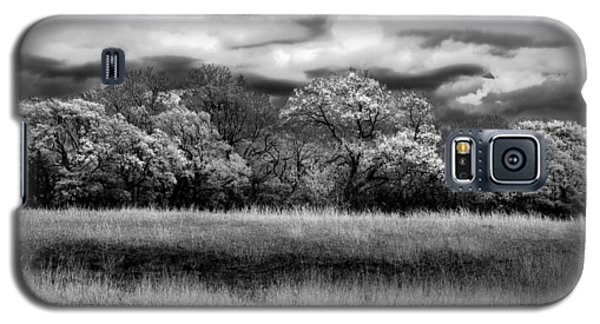 Galaxy S5 Case featuring the photograph Black And White Trees by Darryl Dalton
