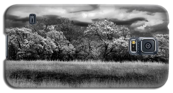 Black And White Trees Galaxy S5 Case