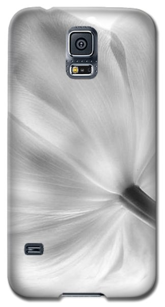 Black And White Tulip Galaxy S5 Case by Arlene Carmel