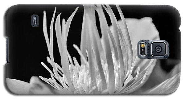 Black And White Universe Galaxy S5 Case