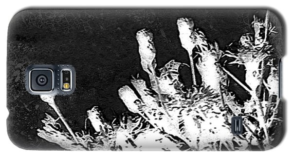 Galaxy S5 Case featuring the photograph Black And White Wildflower by Shawna Rowe