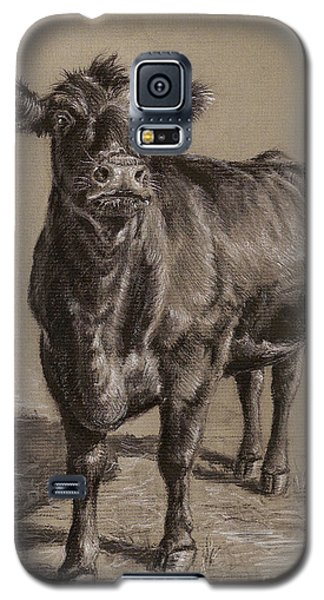 Cow Galaxy S5 Case - Black Angus Cow 1 by Nicole Troup