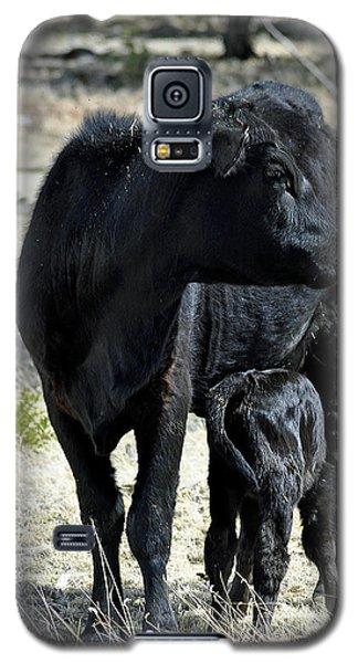 Black Angus Galaxy S5 Case