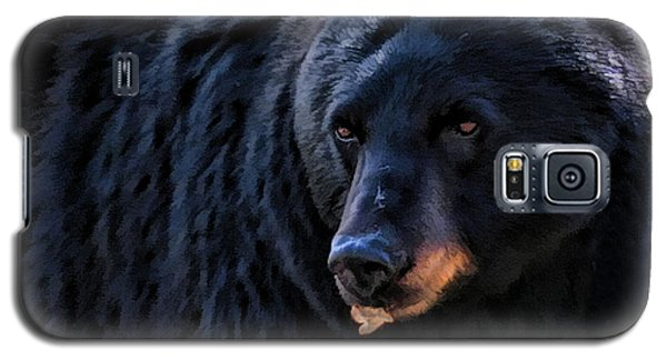 Black Bear Galaxy S5 Case by Clare VanderVeen