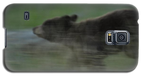 Black Bear Cub Galaxy S5 Case