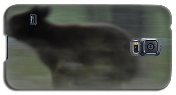 Black Bear Cub Running Galaxy S5 Case
