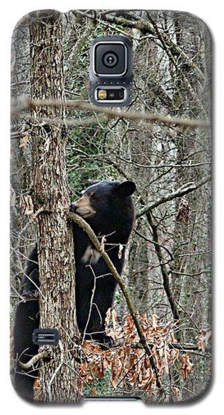 Black Bear Cub Galaxy S5 Case