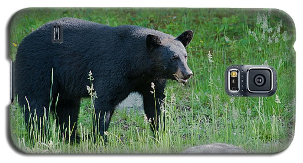 Black Bear Female Galaxy S5 Case