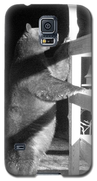 Galaxy S5 Case featuring the photograph Black Bear by Mim White