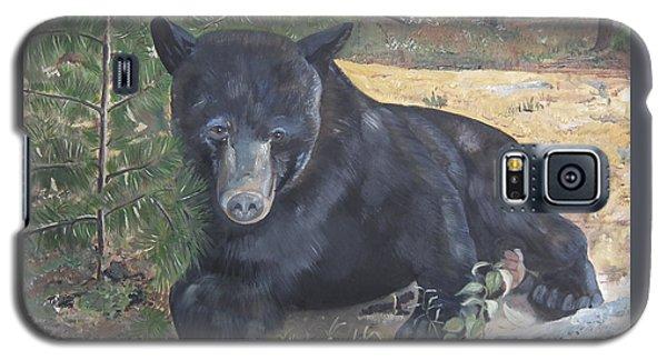 Black Bear - Wildlife Art -scruffy Galaxy S5 Case