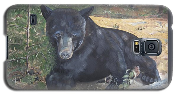 Black Bear - Wildlife Art -scruffy Galaxy S5 Case by Jan Dappen
