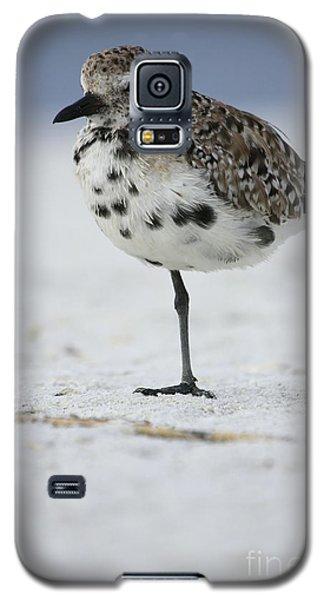 Black-bellied Plover Galaxy S5 Case