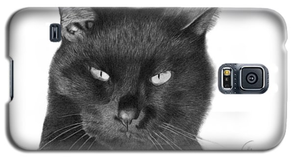 Galaxy S5 Case featuring the drawing Black Cat - 008 by Abbey Noelle