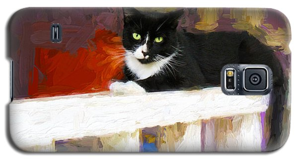 Black Cat In Color Series 2 Galaxy S5 Case