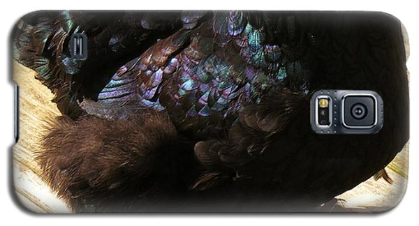 Galaxy S5 Case featuring the photograph Black Cochin by Sherman Perry