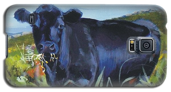 Cows Dartmoor Galaxy S5 Case