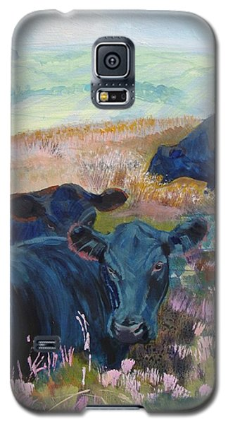 Black Cows On Dartmoor Galaxy S5 Case