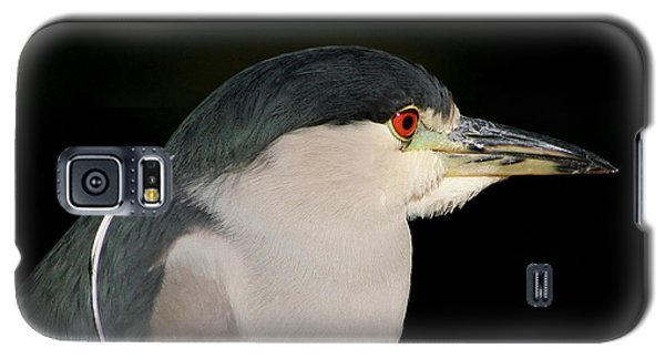 Galaxy S5 Case featuring the photograph Black-crowned Night Heron by Bob and Jan Shriner