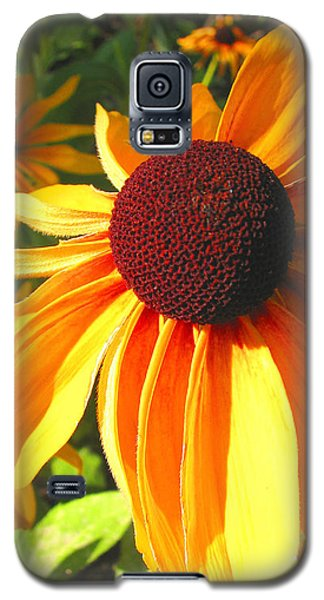 Galaxy S5 Case featuring the photograph Black-eyed Susan In Your Face by Brooks Garten Hauschild