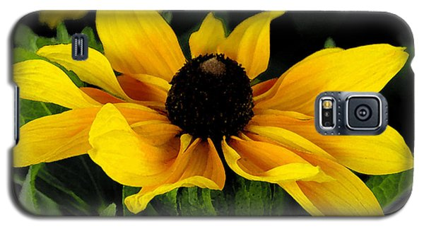 Galaxy S5 Case featuring the photograph Black Eyed Susan  by James C Thomas