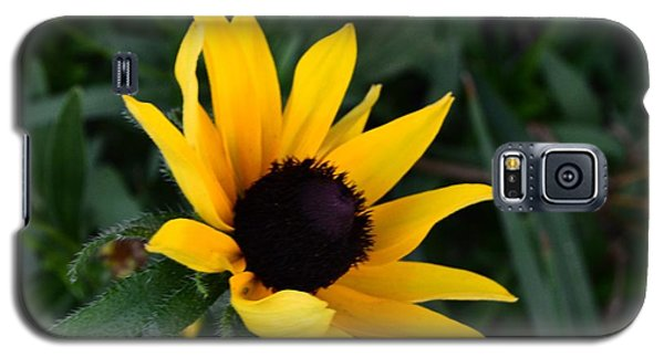 Galaxy S5 Case featuring the photograph Black-eyed Susan Glows With Cheer by Luther Fine Art