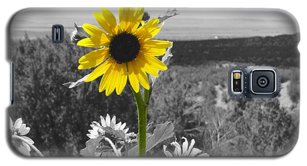 Galaxy S5 Case featuring the photograph Black-eyed Susan by Tom DiFrancesca
