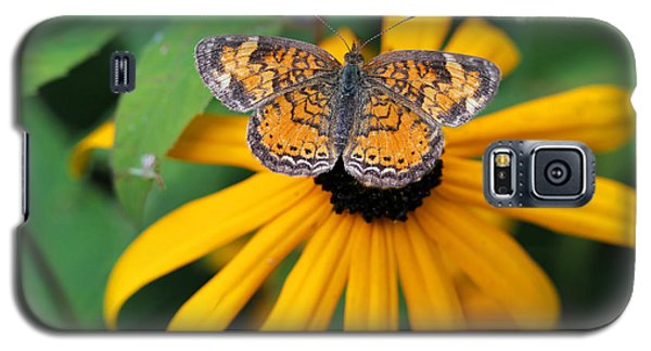 Black Eyed Susan With Butterfly Galaxy S5 Case
