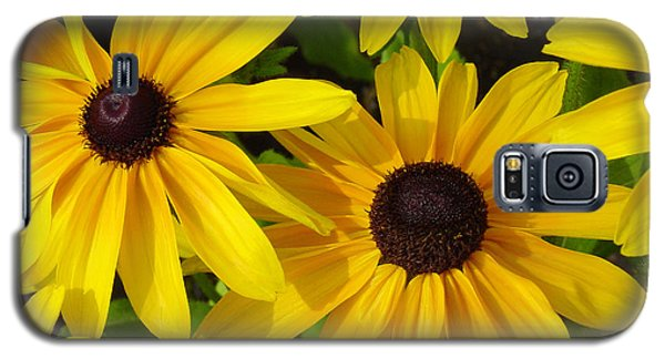 Galaxy S5 Case featuring the photograph Black Eyed Susans by Suzanne Gaff