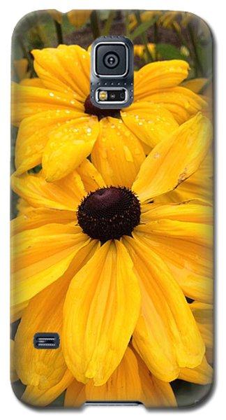 Black Eyed Susans Galaxy S5 Case