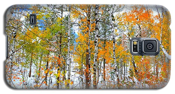 Galaxy S5 Case featuring the photograph Black Hills Veil  by Clarice  Lakota