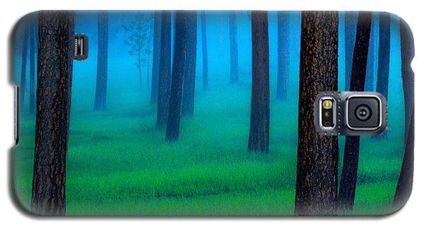 Landscapes Galaxy S5 Case - Black Hills Forest by Kadek Susanto
